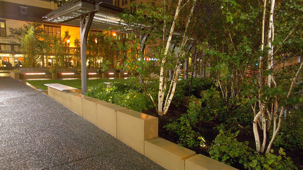 white birch and sandstone plinths at night