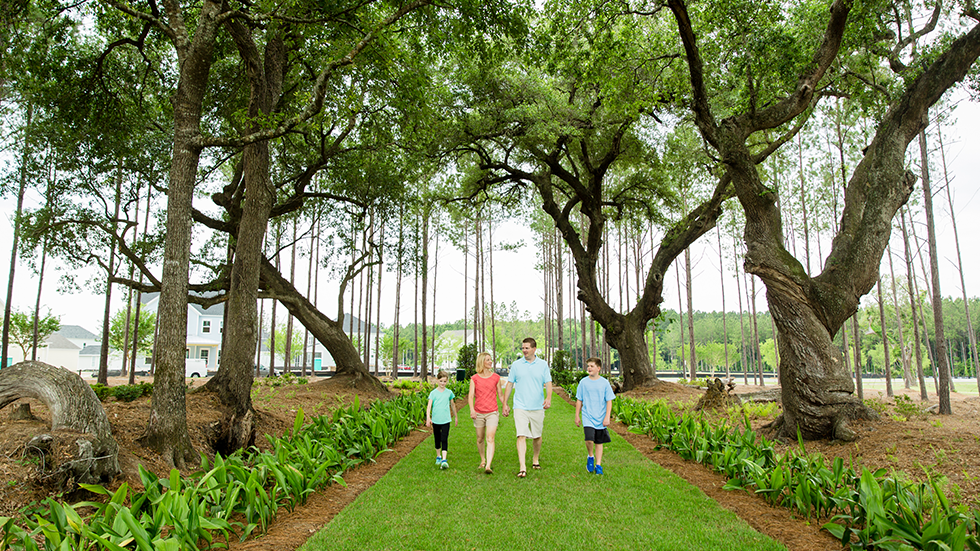 family walking in helix park through live oak allee
