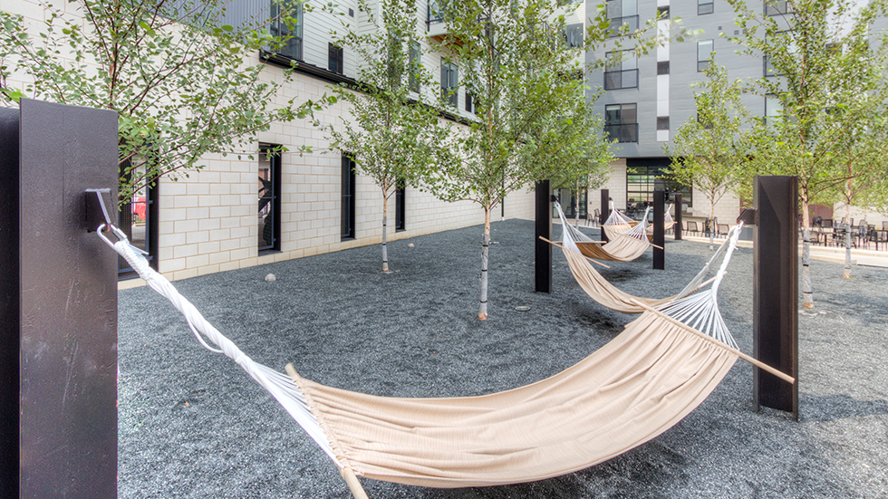 Arsenal Terminal Apartments, Arsenal 201, Hammock grove with single stem whitespire birch